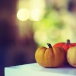 かぼちゃ人気レシピ – 簡単なのにこんなに美味しい!【デザート編】