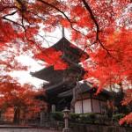 京都の紅葉名所 2013 見頃時期の予想は?