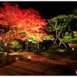 円通院・松島地区の紅葉2013 見ごろ時期とおすすめスポット