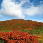 栗駒山の紅葉2013 見ごろ時期とおすすめスポット