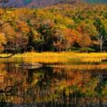 知床五湖の紅葉2013 見ごろ時期とおすすめスポット
