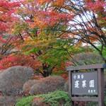 箱根の紅葉名所2013 見頃時期の予想は?