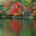 湯の湖の紅葉2013 見ごろ時期とおすすめスポット