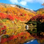 大雪高原温泉の紅葉2013 見ごろ時期とおすすめスポット