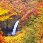 蔵王連峰の紅葉2013 見ごろ時期とおすすめスポット