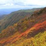 黒岳の紅葉2013 見ごろ時期とおすすめスポット