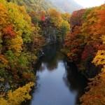 定山渓の紅葉2013 見ごろ時期とおすすめスポット