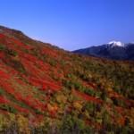 赤岳銀泉台の紅葉2013 見ごろ時期とおすすめスポット