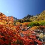涸沢方面の紅葉2013 見ごろ時期とおすすめスポット