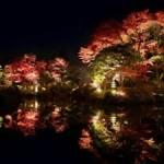 輪王寺の紅葉2013 見ごろ時期とおすすめスポット