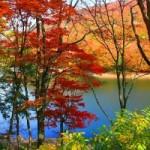 裏磐梯高原(桧原湖付近)の紅葉2013 見ごろ時期とおすすめスポット