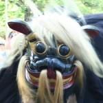 【ながい黒獅子まつり2014】長井の獅子舞はなぜ黒い?由来や見どころを徹底解説!