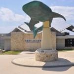沖縄美ら海水族館の割引券とアクセス情報!混雑状況と見どころは?