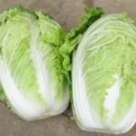 白菜を美味しく冷凍保存するコツは?賞味期限はどれくらい延びる?