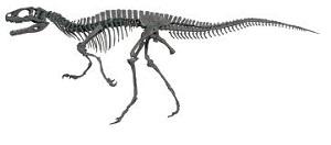 恐竜カフェ 東急ハンズ 東京_html_2e6c0331