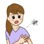 デング熱が日本に!?その症状と治療法、名前の由来は?
