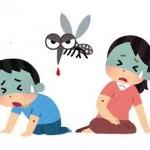 デング熱の初期症状と予防法、致死率は?デング熱に関する知識まとめ