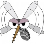 夏になると蚊が多い!何で耳元に飛んでくるの?