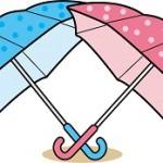 傘の寿命はどれくらい?寿命を伸ばす正しいお手入れ方法は?